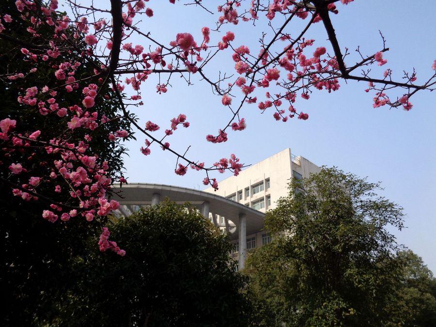 湖北师范大学风景