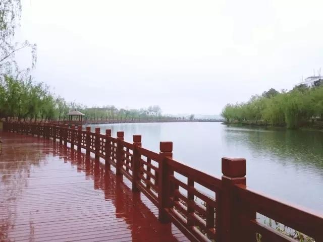 中南财经政法大学风景
